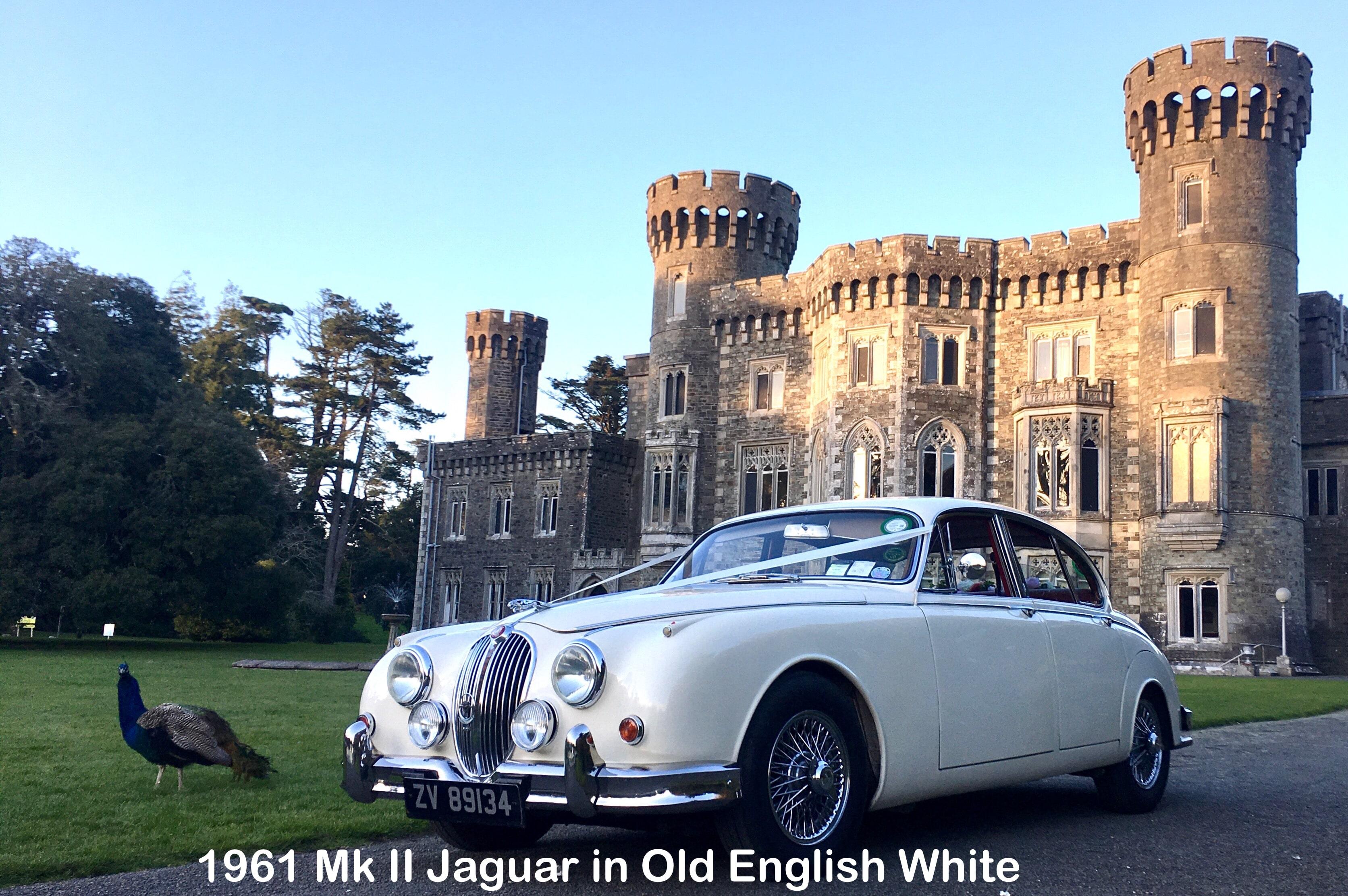 "Mk II Jaguar wedding car in Old English White""width="